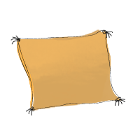 coussin2pompons